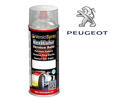 Pintura Coche Spray PEUGEOT 206